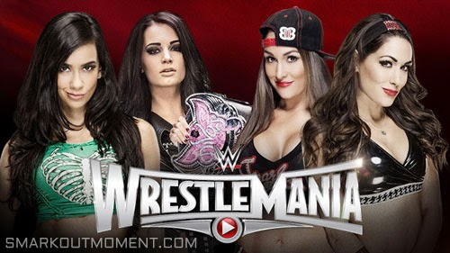 WWE WrestleMania 31 Paige AJ Lee vs Brie Bella Nikki Bella