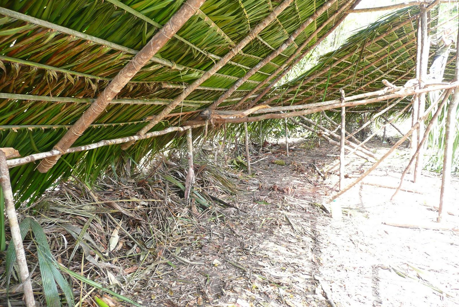 ARQUITECTURA INDGENA CONSTRUCCION DE UN SHABONO YANOMAMI or