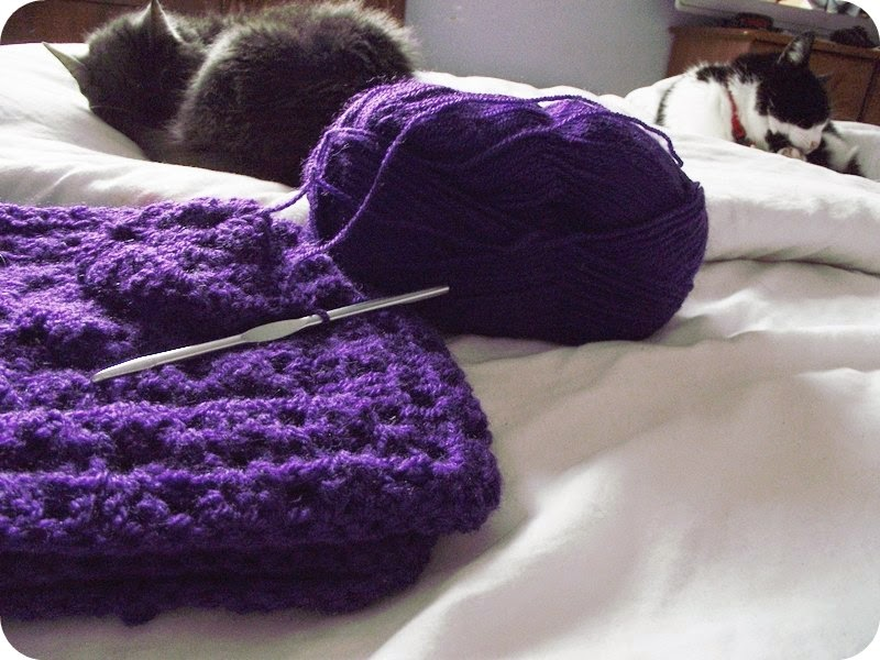 crochet yarn wool cats