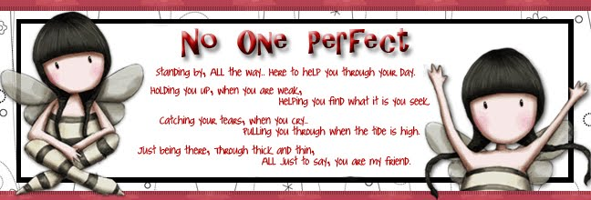 no one perfect
