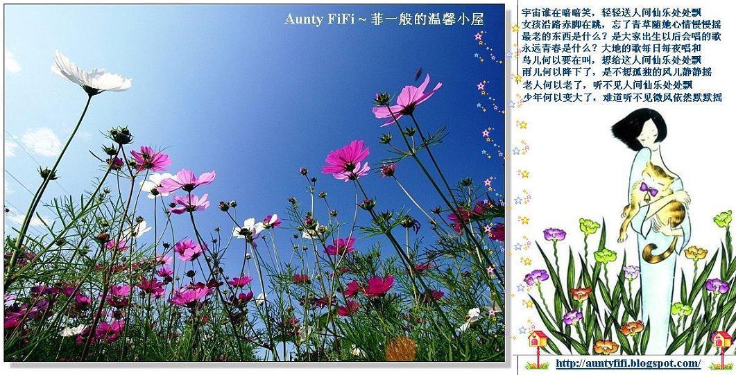 Aunty FiFi ~ 菲一般的温馨小屋