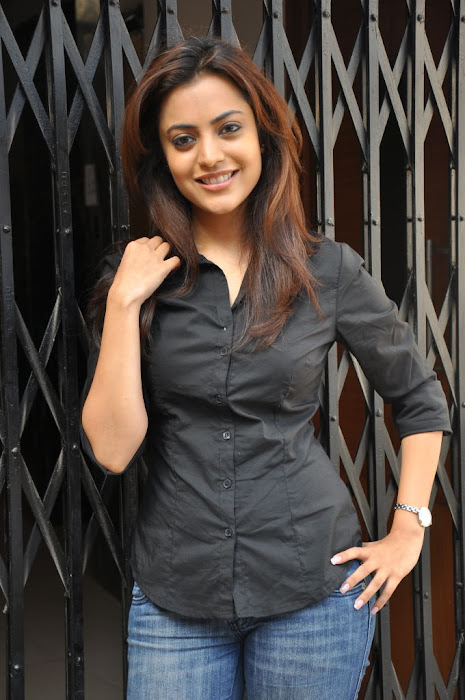 nisha agarwal new @ solo sucess meet latest photos