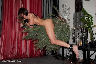 http://qsbdsm.com/wp-content/gallery/poor-christmas-tree/dsc_0042.jpg