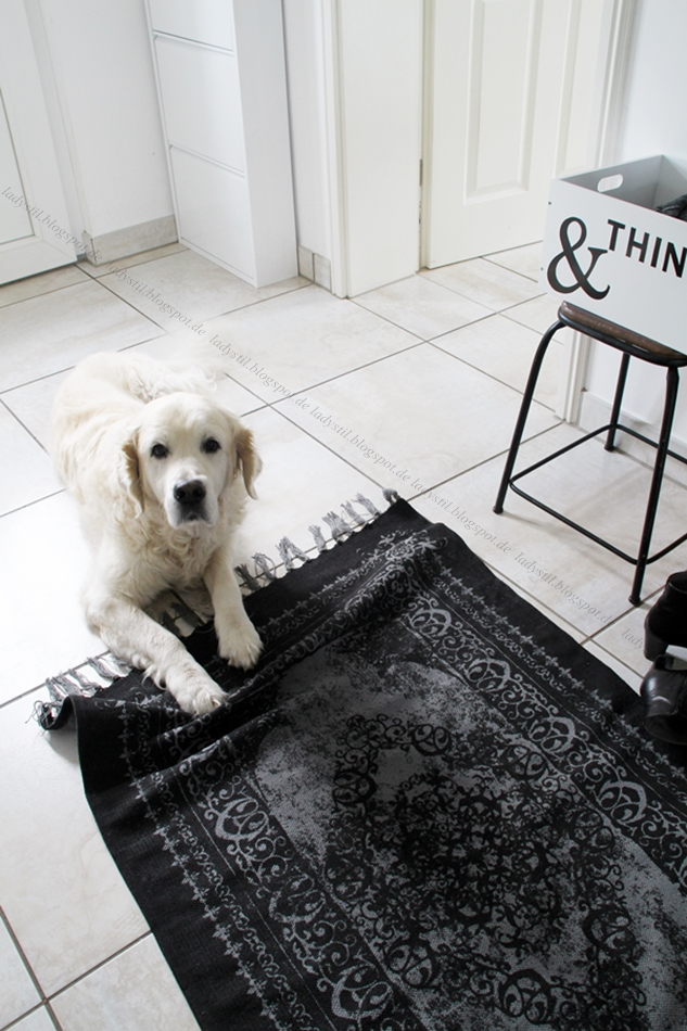 Hund liegt auf schwarzem Teppich