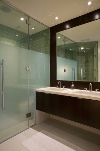 To da loos partially frosted glass showers for Opaque glass door for bathroom