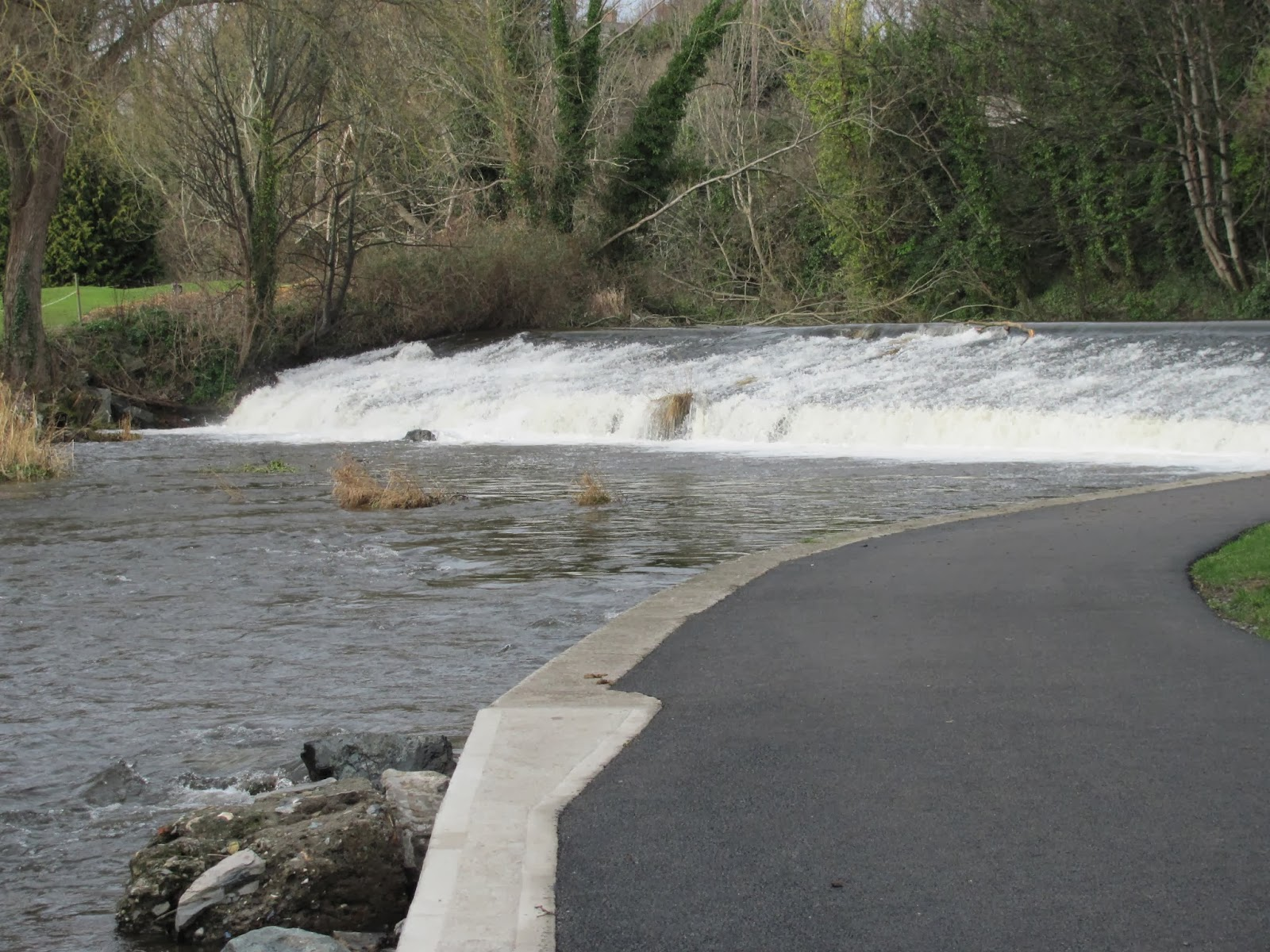One of many Dodder weirs in Dublin