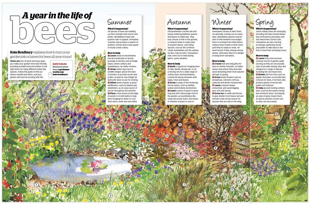 This Was For Gardenersu0027 World Magazine Recently, In The July Issue Which  Featured Gardening For Bees. It Was A Lovely Commission, So Many Of My  Favourite ...