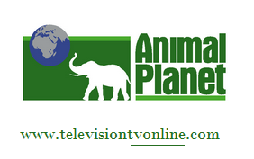Channel Animal Planet En vivo Online Gratis