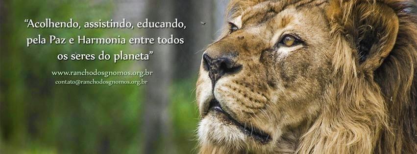 Doe Notas Fiscais Paulistas: os animais do Rancho dos Gnomos agradecem!