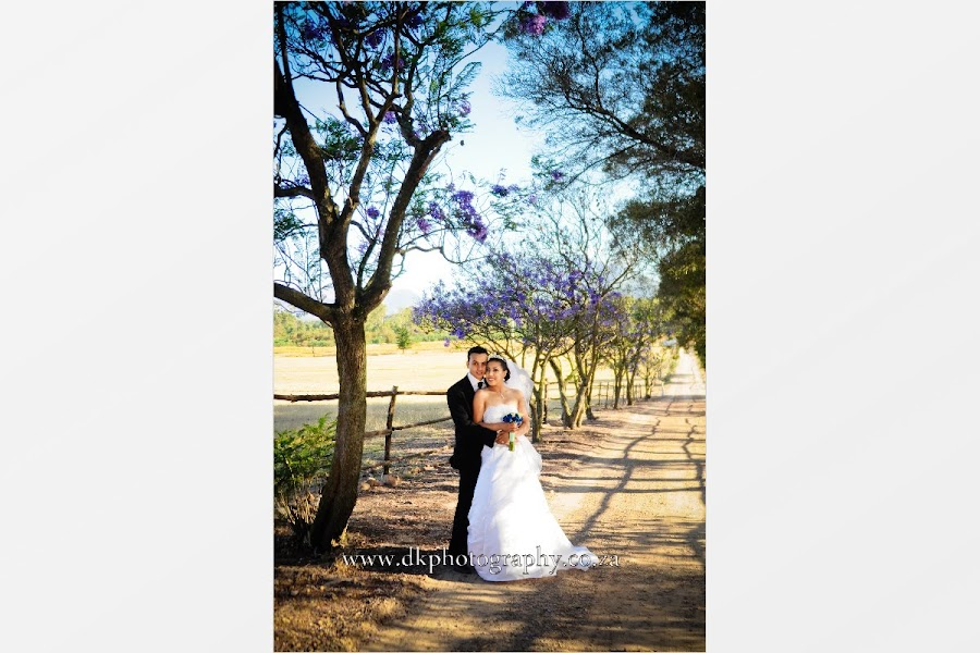 DK Photography Slideshow-183 Niquita & Lance's Wedding in Welgelee Wine Estate  Cape Town Wedding photographer