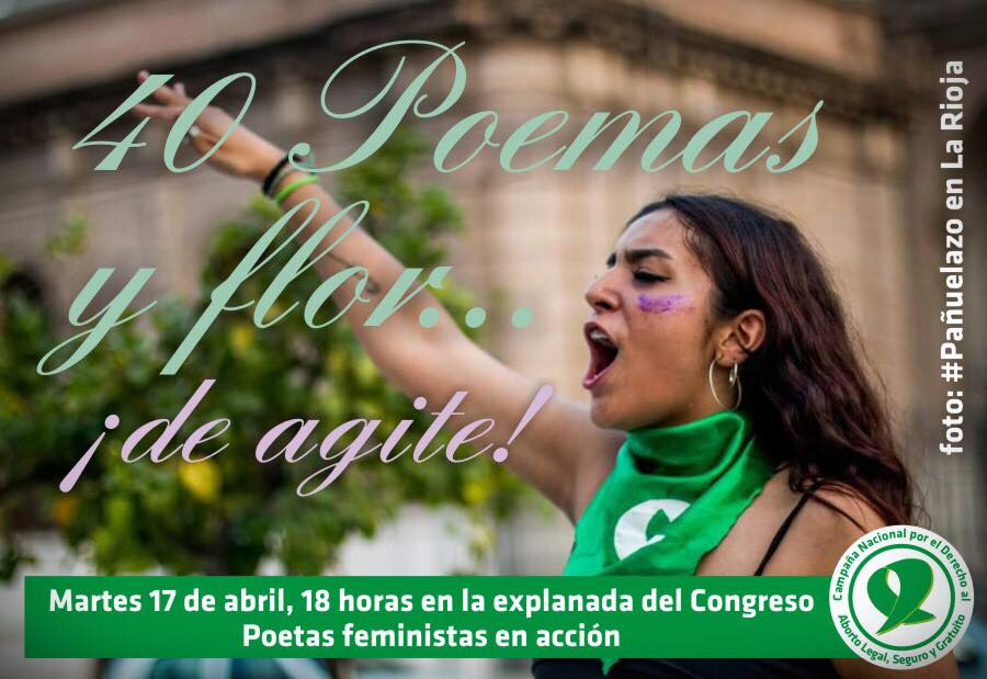 40 poemas y flor ¡de agite! Explanada del Congreso de la Nación. 2018.