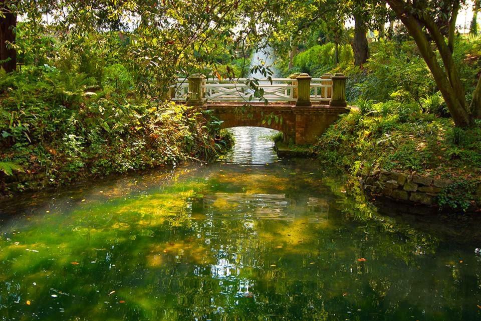Mery trendy gij n for Programacion jardin botanico