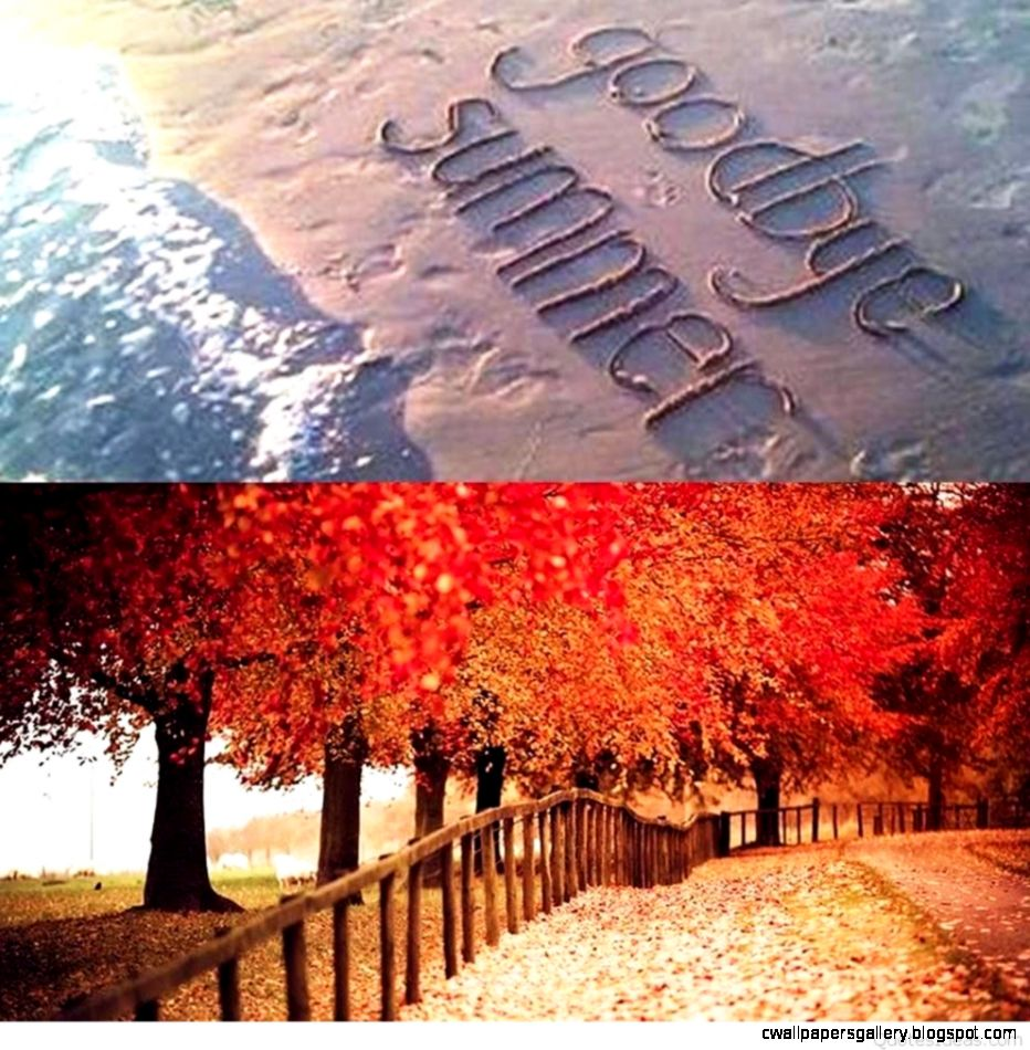 Goodbye Summer Quotes  Wallpapers Gallery