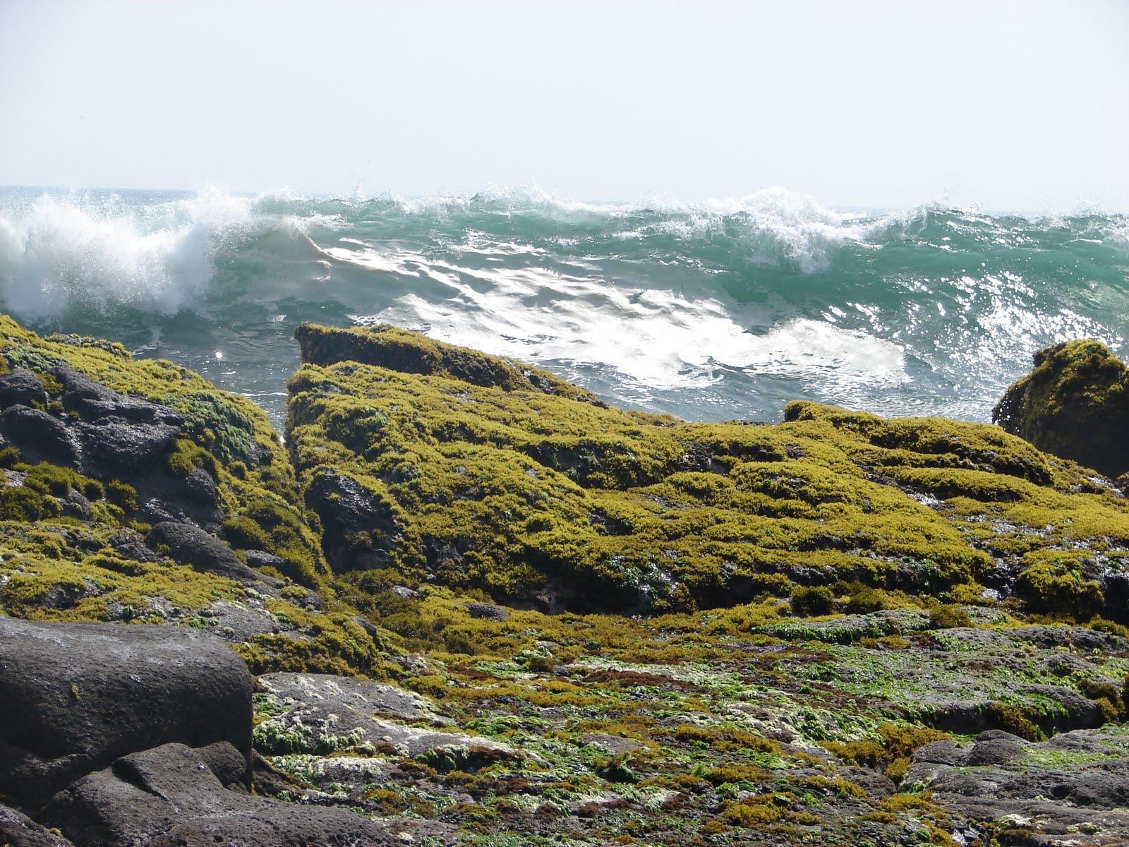 30-octubre-31...2011 nuevas,fotos,playa ,Hornillos, Rebeca, Mar, SOL, RELAX,,,sec,,,UFO...