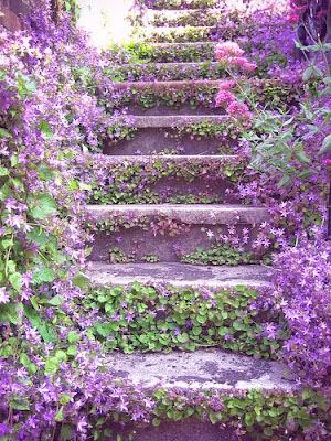 Liliac Stairway