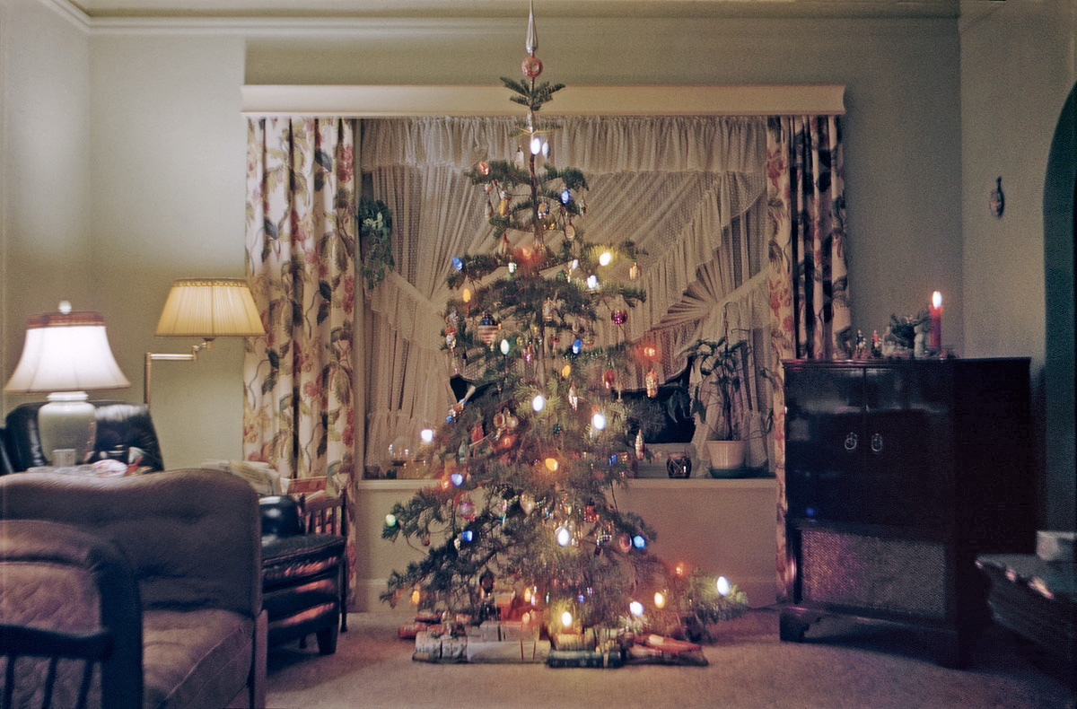 christmas tree 1955
