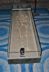 Esqueleto de combatente português