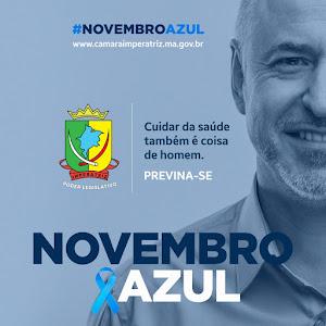 Novembro Azul - Câmara Cidadã