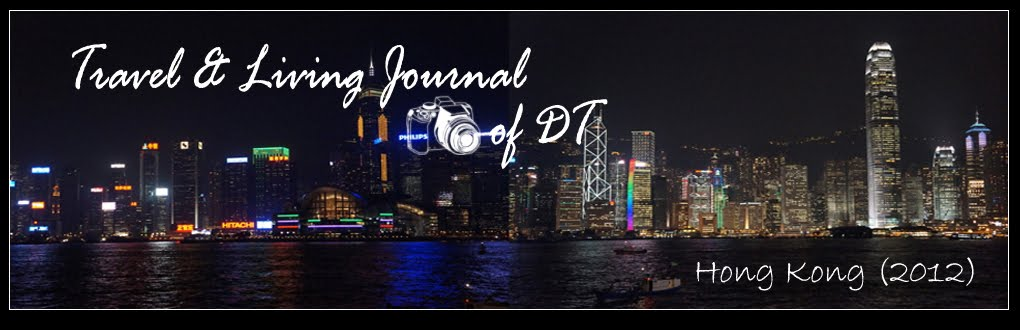 Travel &amp; Living Journal of DT