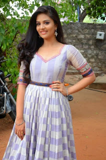 Sri Mukhi Pictures in Long Dress at Dhana Lakshmi Talupu Tadithe Press Meet ~ Celebs Next