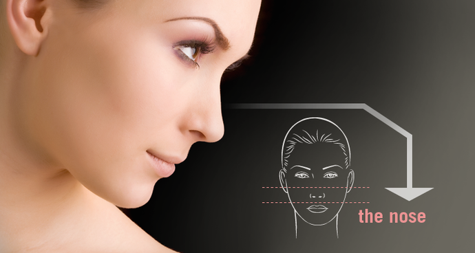 http://reconfaceindia.com/cosmetic-rhinoplasties.php