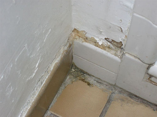 CLEAN PRO RESTORATION: Identifying Water Damage: