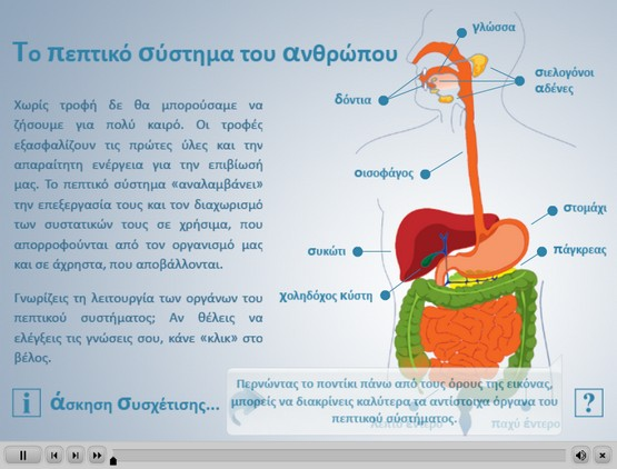 http://photodentro.edu.gr/photodentro/digestive_system_p_pidx0016072/Kef_4_digestive_system_700_500.swf