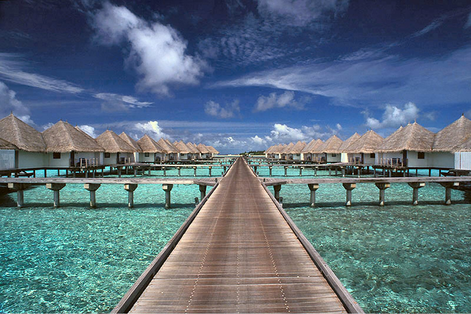 tourism in maldives Tourism is the number one generator of revenue in the maldives, and for this reason, choosing eco-friendly and locally sponsored activities and hotels is important to the maldivian culture.