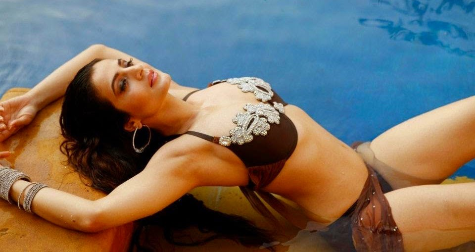 Ameesha Patel posing poolside in Brown Bikini