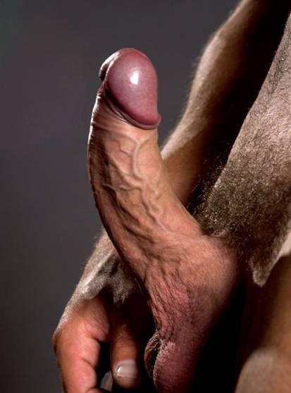 free rachel steele porn videos
