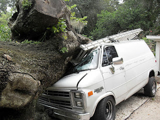 silversmith lane water oak falls on van