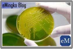 Manfaat dan Bahaya Bakteri E. Coli