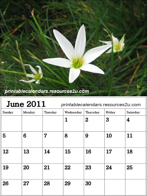 2011 Calendar Free Printable. January 2011 Calendar, free to download and print This