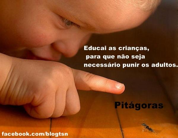 Muitas vezes Frases - Pitágoras - Educação PM62