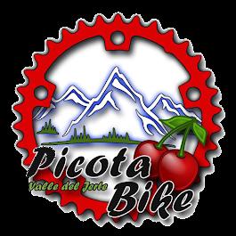 Picota Bike Valle del Jerte A.D.