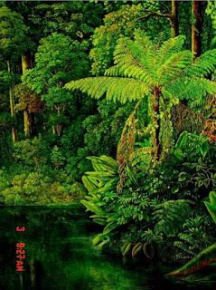 lienzos-de-paisajes-naturales