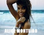 Blog da Alice
