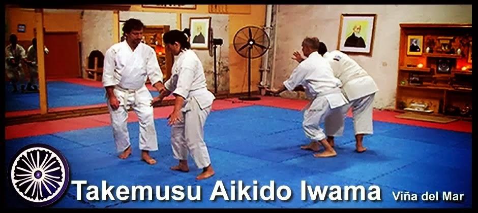 Takemusu Aiki Tanren Dojo Iwama Style
