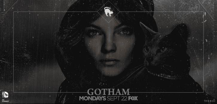 Gotham - Promotional Animated Key Art