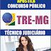 Apostila Concurso TRE-MG 2014 - Técnico Judiciário: Área Administrativa