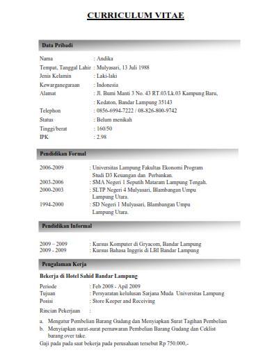 Jobs Lampung 2012 Contoh Curriculum Vitae