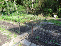 View of garden paths and trellises