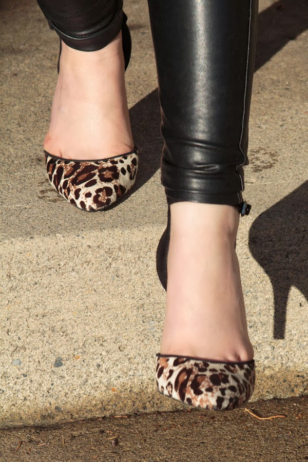 Wilfred Free, leather pants, Enzo Angiolini, leopard pumps