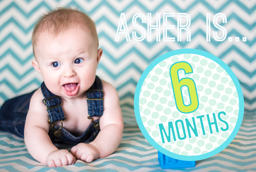 Holly The Mommy 6 Month