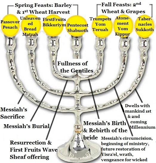 7 Branch Menorah by Double Portion Inheritance