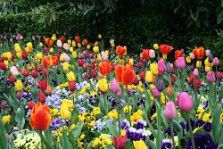 ¡Felicidades a todas las madres en su día!