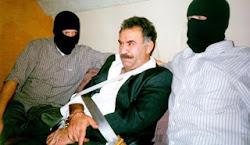 عبدالله اوجالان؛ کوه کردستان در تلۀ گرگان