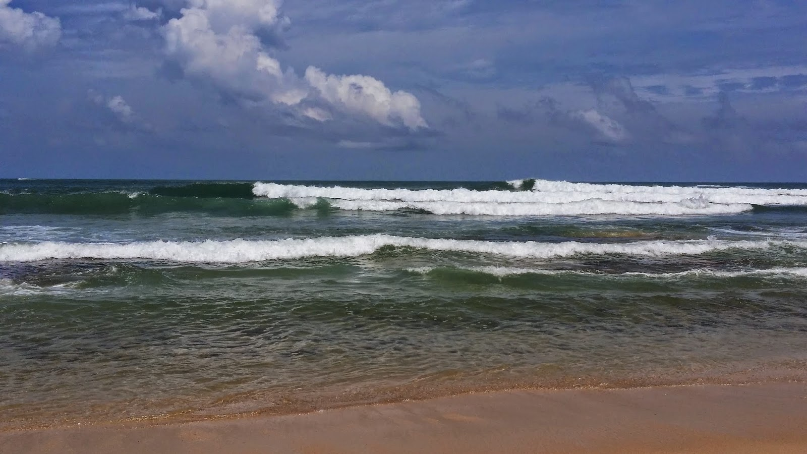 Playa de Mirissa (Sri Lanka)