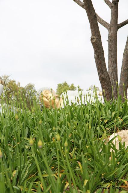 """Contínuo a minha visita pelo parque agora foquei me no buda de grandes dimensões dourado que se encontrava na parte central o seu tamanho faz-me sentir minúscula, uma formiguinha. Não foi fácil fotografar o buda tão """"descontraído"""" sem que passassem por cima dele como se de uma escada se trata-se, onde descuidos e maus tratos só danificam tão bela estátua."""