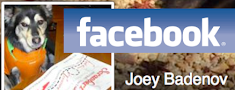 Joey Badenov on Facebook